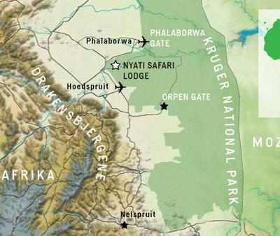 Lyxsafari i Sydafrika